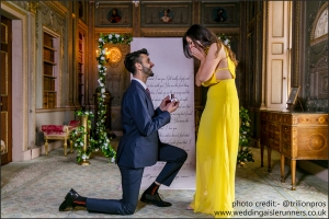 wedding proposal at Syon park